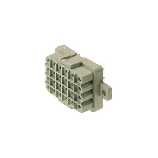 Buchsengehäuse-Platine RSV Polzahl Gesamt 12 Weidmüller 1443600000 Rastermaß: 5 mm 25 St.