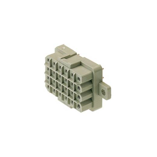 Buchsengehäuse-Platine RSV Polzahl Gesamt 18 Weidmüller 1417600000 Rastermaß: 5 mm 25 St.