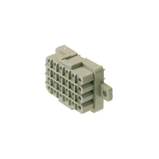 Weidmüller Buchsengehäuse-Platine RSV Polzahl Gesamt 12 Rastermaß: 5 mm 1416600000 25 St.