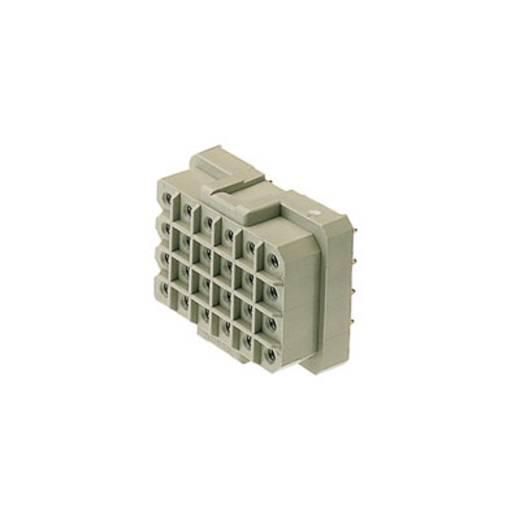 Buchsengehäuse-Platine RSV Polzahl Gesamt 12 Weidmüller 1416300000 Rastermaß: 5 mm 25 St.