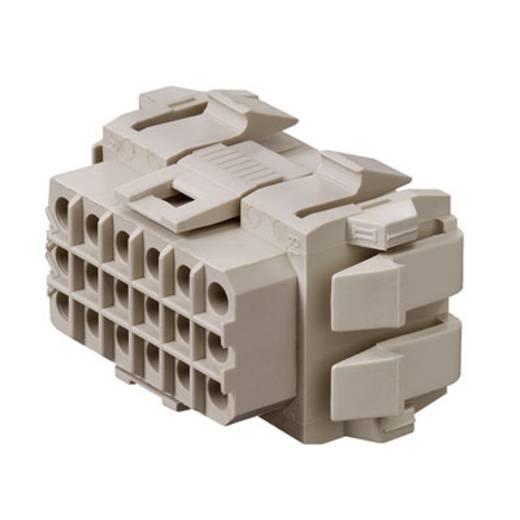 Weidmüller Buchsengehäuse-Platine RSV Polzahl Gesamt 18 Rastermaß: 5 mm 1417000000 25 St.