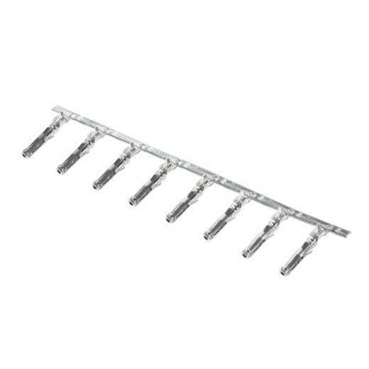Leiterplattensteckverbinder CB1,6R14-12 SN I4,2 Weidmüller Inhalt: 3000 St.