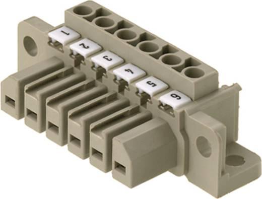 Stiftgehäuse-Kabel Polzahl Gesamt 8 Weidmüller 1612140000 Rastermaß: 7 mm 10 St.