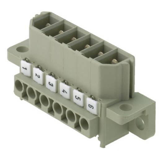 Buchsengehäuse-Kabel ST Polzahl Gesamt 8 Weidmüller 1612780000 Rastermaß: 7 mm 10 St.