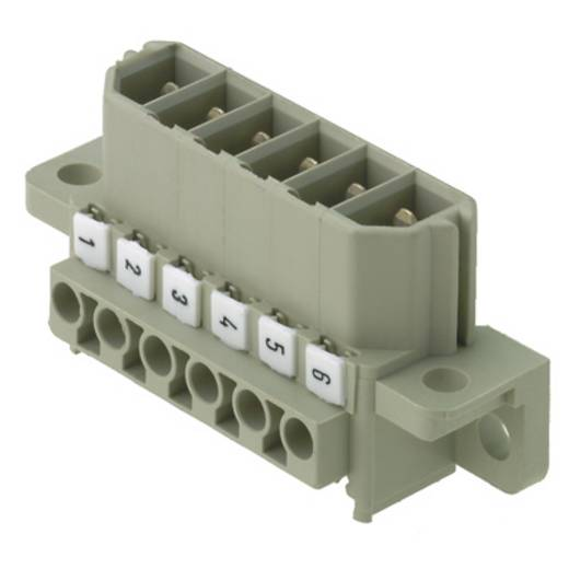 Weidmüller Stiftgehäuse-Kabel Polzahl Gesamt 4 Rastermaß: 7 mm 1612700000 10 St.