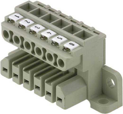Buchsengehäuse-Kabel ST Polzahl Gesamt 8 Weidmüller 1612990000 Rastermaß: 7 mm 10 St.