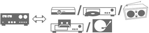SpeaKa Professional Cinch Audio Anschlusskabel [2x Cinch-Stecker - 2x Cinch-Stecker] 2.50 m Schwarz