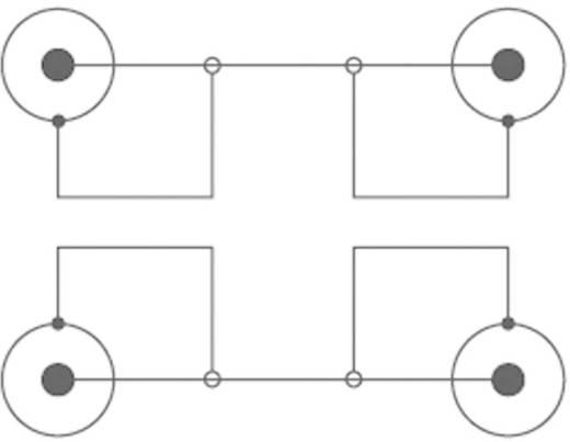 Cinch Audio Anschlusskabel [2x Cinch-Stecker - 2x Cinch-Stecker] 0.50 m Blau vergoldete Steckkontakte SpeaKa Professional