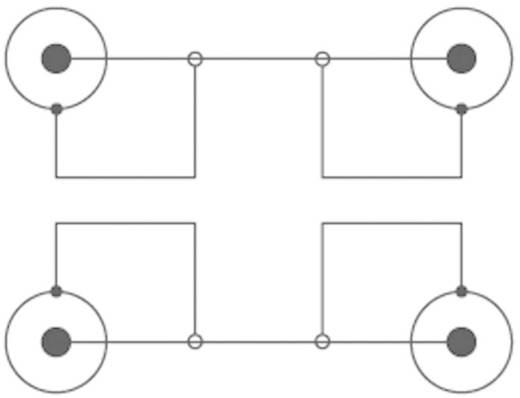 SpeaKa Professional Cinch Audio Anschlusskabel [2x Cinch-Stecker - 2x Cinch-Stecker] 2.50 m Blau vergoldete Steckkontakt