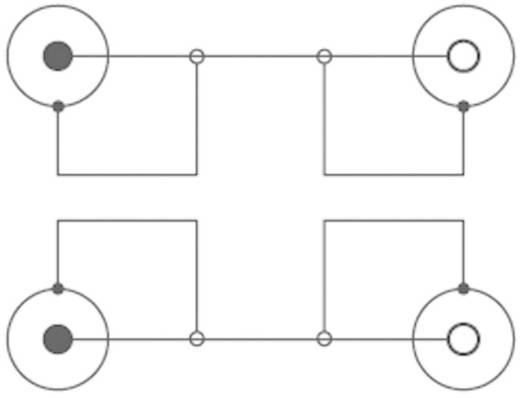 SpeaKa Professional Cinch Audio Verlängerungskabel [2x Cinch-Stecker - 2x Cinch-Buchse] 3 m Schwarz