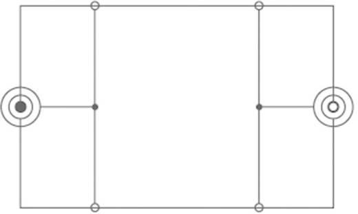 SpeaKa Professional Klinke Audio Verlängerungskabel [1x Klinkenstecker 3.5 mm - 1x Klinkenbuchse 3.5 mm] 5 m Schwarz