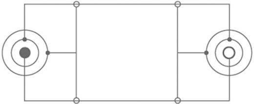 Klinke Audio Verlängerungskabel [1x Klinkenstecker 6.35 mm - 1x Klinkenbuchse 6.35 mm] 10 m Schwarz SpeaKa Professional