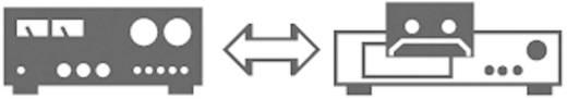 DIN-Anschluss Audio Anschlusskabel [1x Diodenstecker 5pol (DIN) - 1x Diodenstecker 5pol (DIN)] 1.50 m Schwarz SpeaKa Professional