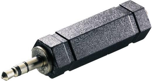 SpeaKa Professional 325102 Klinke Audio Adapter [1x Klinkenstecker 3.5 mm - 1x Klinkenbuchse 6.35 mm] Schwarz