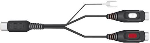 SpeaKa Professional 325114 Cinch / DIN-Anschluss Audio Y-Adapter [1x Diodenstecker 5pol (DIN) - 2x Cinch-Buchse] Schwarz
