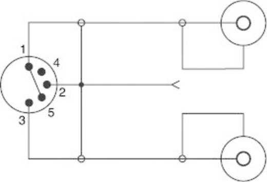 Cinch / DIN-Anschluss Audio Y-Adapter [1x Diodenstecker 5pol (DIN) - 2x Cinch-Buchse] Schwarz SpeaKa Professional