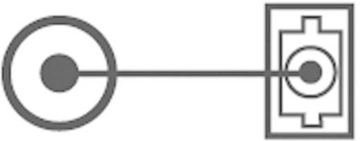 SpeaKa Professional Toslink Digital-Audio Adapter [1x Optischer Stecker 3.5 mm - 1x Toslink-Buchse (ODT)] 0 m Schwarz