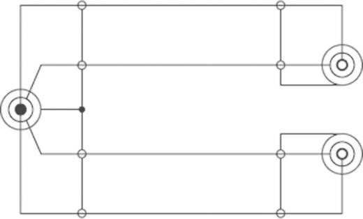 SpeaKa Professional Klinke Audio Y-Adapter [1x Klinkenstecker 6.35 mm - 2x Klinkenbuchse 6.35 mm] Schwarz