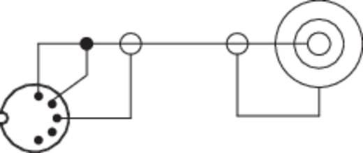 DIN-Anschluss / Klinke Audio Adapter [1x DIN-Stecker 5pol. - 1x Klinkenbuchse 6.35 mm] Schwarz SpeaKa Professional
