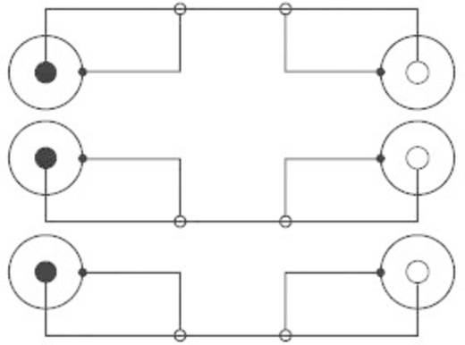 Composite Cinch AV Verlängerungskabel [3x Cinch-Stecker - 3x Cinch-Buchse] 2 m Schwarz SpeaKa Professional