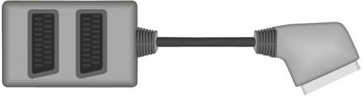 SCART Verteiler [1x SCART-Stecker - 2x SCART-Buchse] 0.20 m Schwarz SpeaKa Professional