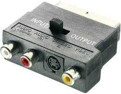 SCART / cinch / S-video adaptér SpeaKa Professional SP-1300828, [1x SCART zástrčka - 3x cinch zásuvka, S-Video zásuvka], černá