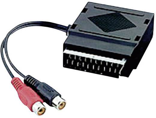 SCART / Cinch Adapter [1x SCART-Stecker - 2x Cinch-Buchse, SCART-Buchse] Schwarz SpeaKa Professional
