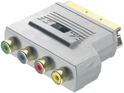 Sound & Image Adapter SCART-Stecker / 4 x Cinch-Buchse