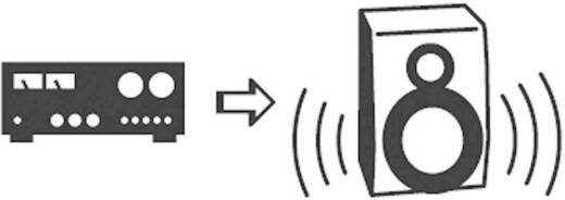 SpeaKa Professional Cinch Audio Y-Adapter [2x Cinch-Stecker - 1x Cinch-Buchse] Schwarz