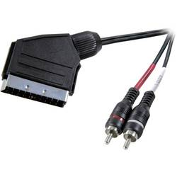 SCART / cinch audio prepojovací kábel SpeaKa Professional SP-1301328, 2 m, čierna