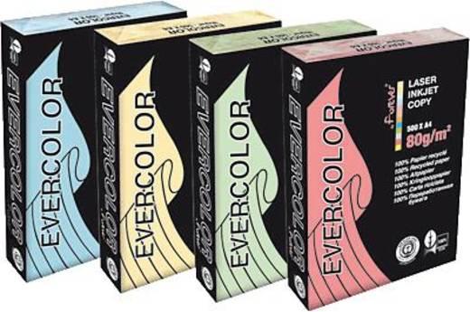 Forever Evercolor Pastell