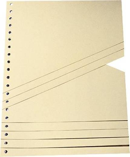 Staffeltrennblätter/9591100100 B230xH300 mm chamois 200 g/qm Inh.100