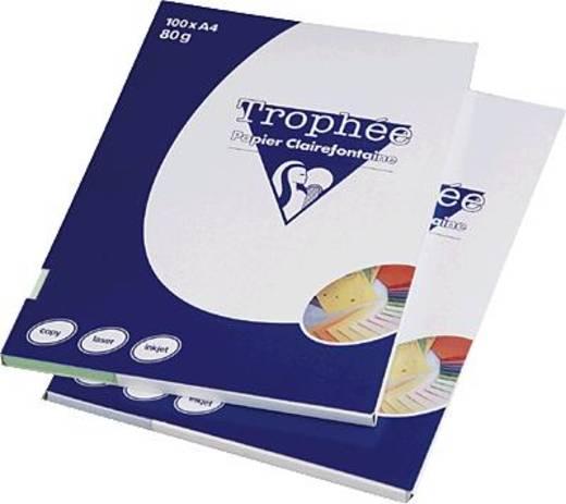 Trophée Pastell PPP-Papier