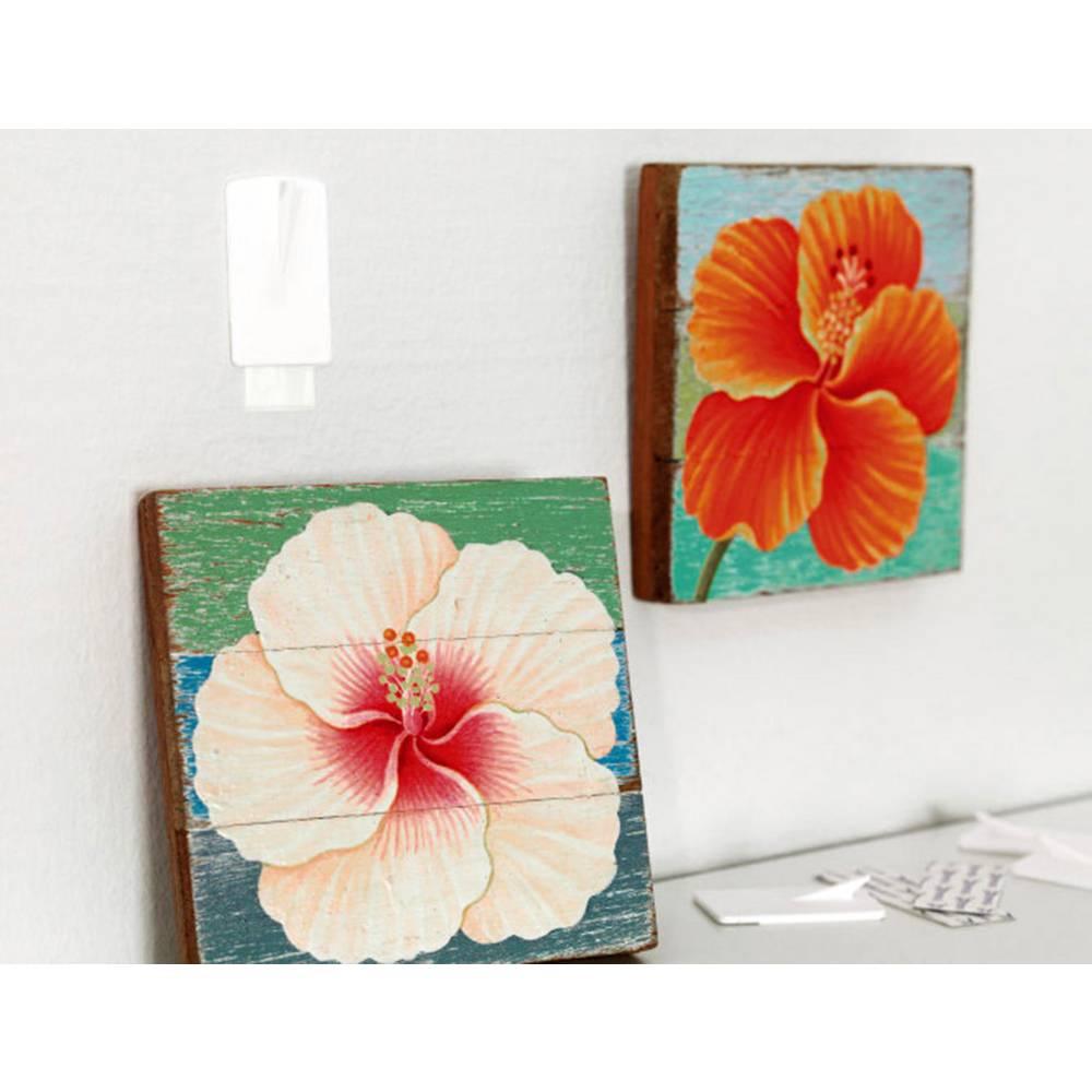 crochet pour cadres tesa powerstrips tesa 58031 00020 00 blanc 2 pc s sur le site internet. Black Bedroom Furniture Sets. Home Design Ideas