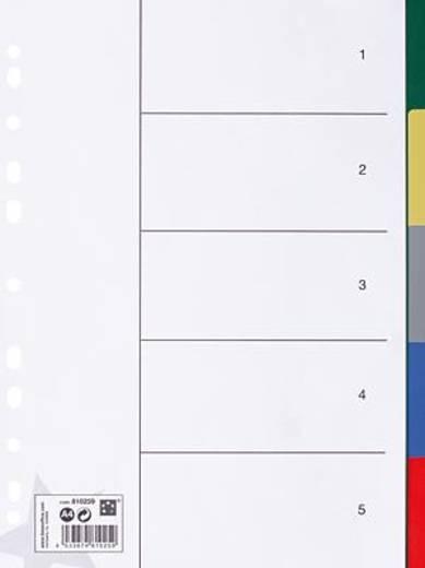 5 Star Register Blanko A4 5-farbig 5-teilig 125 my