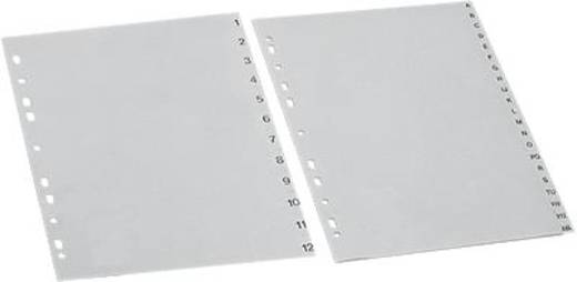 5 Star Maxi Register A4 Übergröße grau 1-12 297x245mm 120µ