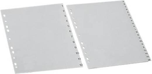 5 Star Maxi Register A4 Übergröße grau 1-31 297x245mm 120µ