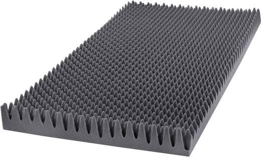 Akustikschaumstoff (L x B x H) 1000 x 500 x 60 mm GA25GO