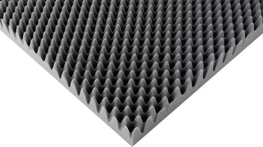Akustikschaumstoff (L x B x H) 1000 x 500 x 60 mm S2640F