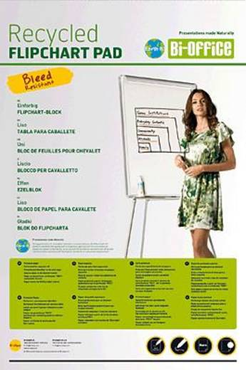 Bi-Office Flipchartpapier Earth-It /FL0311802 100 x 65 cm 5x50 Blatt 55 g/qm
