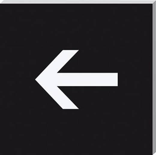 Sigel Piktogramm PA323 Richtungspfeil