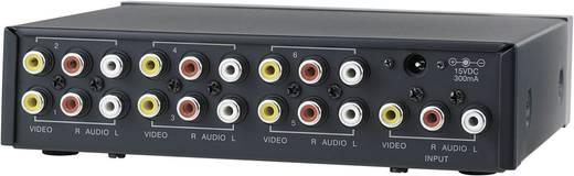 6 Port Composite-Splitter SpeaKa Professional 352500 Schwarz
