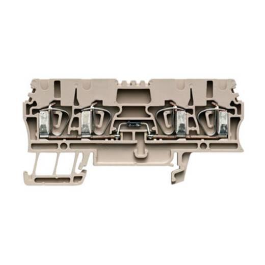 Bauelement-Reihenklemme ZDU 2.5/2X2AN/D- Weidmüller Inhalt: 20 St.