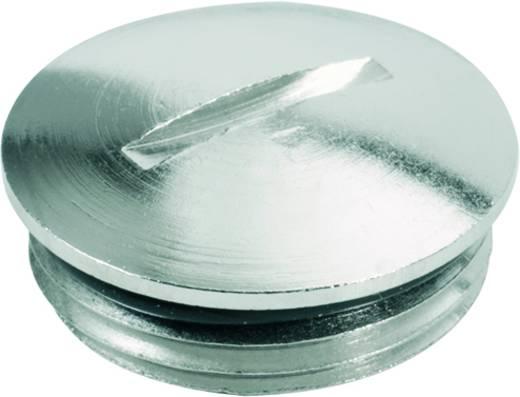 Verschlussschraube PG48 Polyamid Licht-Grau (RAL 7035) Weidmüller VP 48-K54 5 St.