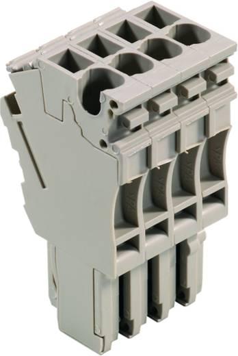Steckverbinder ZP 2.5/1AN/QV/4 1815220000 Weidmüller 25 St.