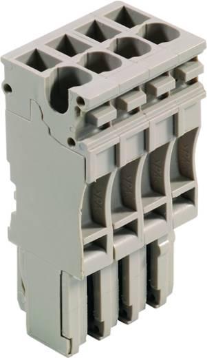Steckverbinder ZP 2.5/1AN/4 1815500000 Weidmüller 25 St.