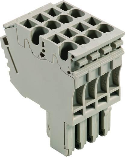 Steckverbinder ZP 2.5/2AN/QV/4 1815760000 Weidmüller 20 St.