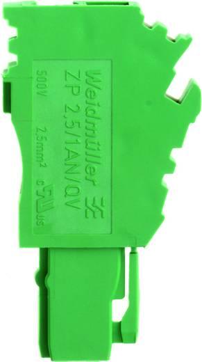Steckverbinder ZP 2.5/1AN/QV/1 GN 1820570000 Weidmüller 50 St.