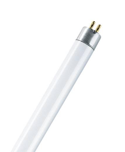 Leuchtstoffröhre G5 14 W Kalt-Weiß Röhrenform (Ø x H) 16 mm x 549 mm EEK: A+ 1 St.