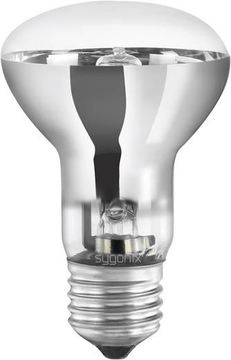 Eco Halogen 98 mm Sygonix 230 V E27 42 W Warm-Weiß EEK: C Reflektor dimmbar 1 St.